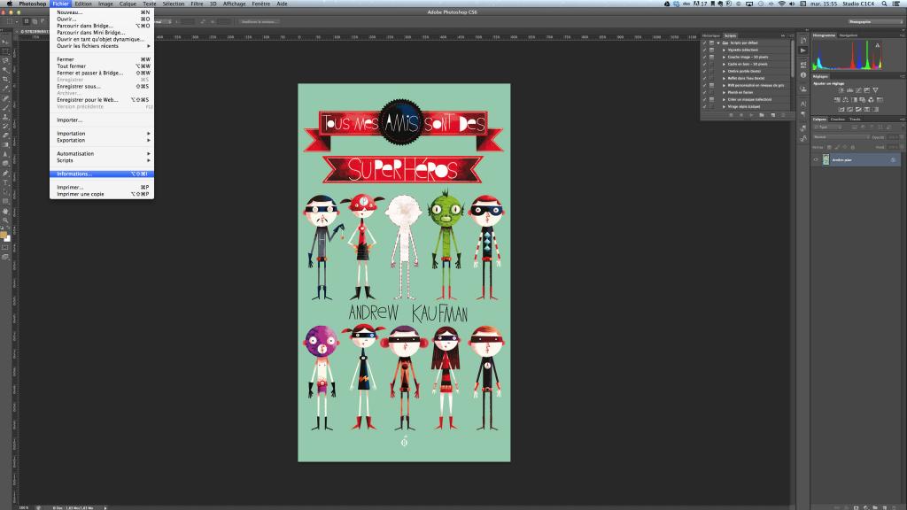 Dans le menu Information de Photoshop, vous trouverez la fenêtre nécessaire pour l'entrée de données